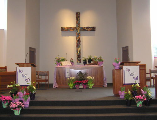 Lent Photo for the Day —  Happy Easter!